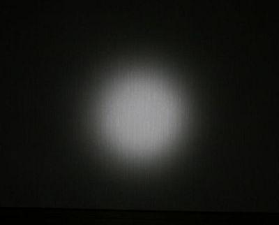 Image3998