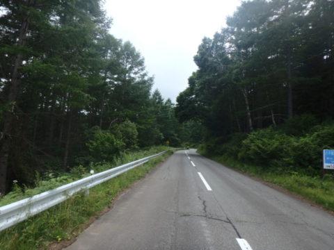 麦草峠への道(5)