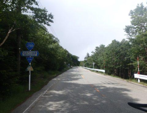 麦草峠への道(6)